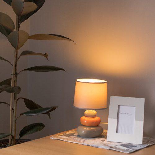 Zimmer-Bernburg-Schreibtisch-mit-Lampe-und-Pflanze